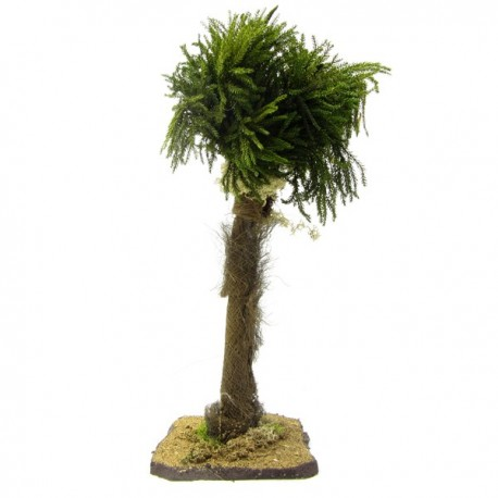 PALM FOR THE NATIVITY SCENE