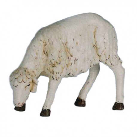 SHEEP WITH LOW HEAD