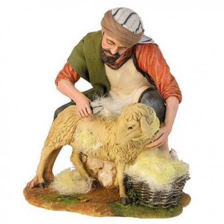 ORIENTAL SHEEPSHEARER