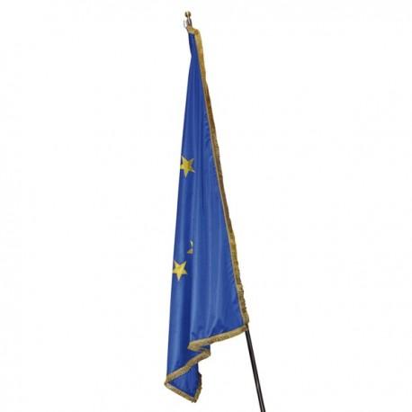 FLAG OF EUROPE WITH FRINGE