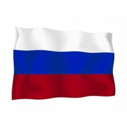 FLAG OF C.S.I